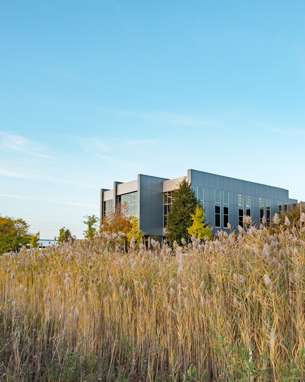 High tech building emerges from grasses in London Ontario by Scott Webb Photography