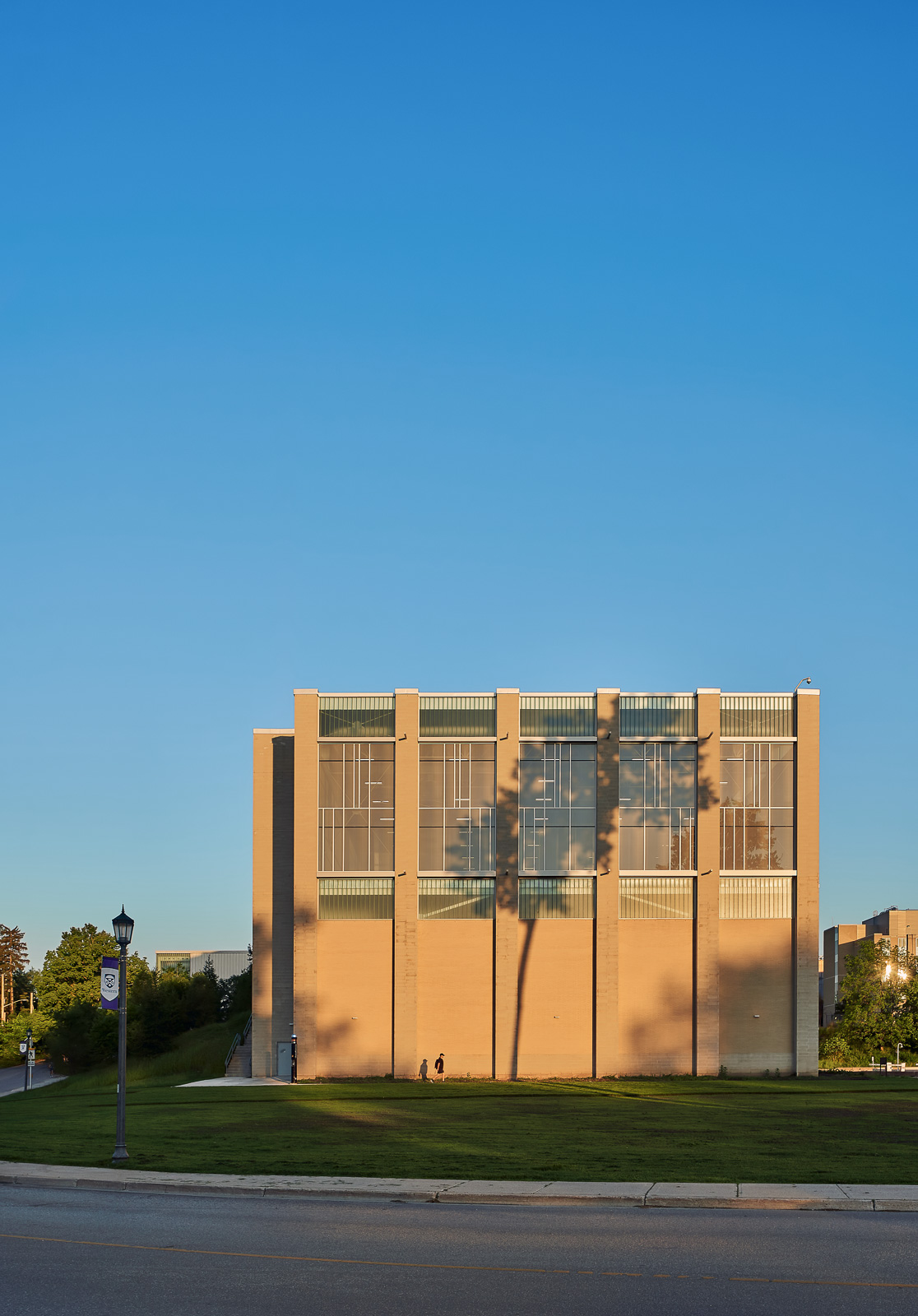 Large Tree shadow cast on building addition of uwo recreation centre London